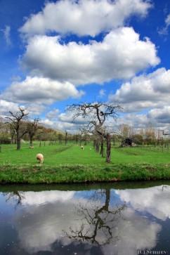 Langbroekerdijk