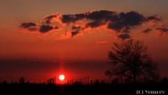 Zonsondergang in de Betuwe